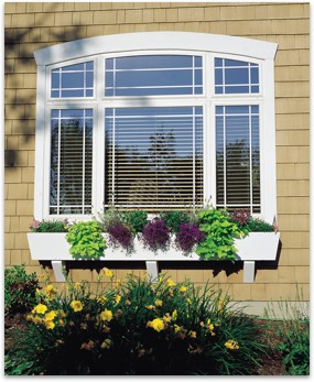 Specialty arched vinyl window